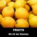 Fruits M.I.N de Nantes